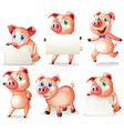 pigs holding blank boards vector image