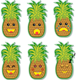 pineapple face vector image vector image