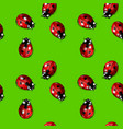 seamless background with ladybirds vector image vector image