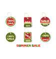 collection style watermelons summer sale tags vector image vector image