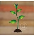eco plant vector image