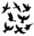 set flying birds silhouettes vector image vector image