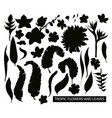 tropical leaves and flowers silhouette vector image vector image