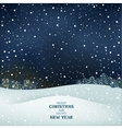 Winter Christmas night vector image vector image