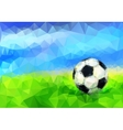 Soccer Ball in Stadium vector image