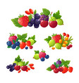 fresh summer berries strawberry blackberry vector image vector image