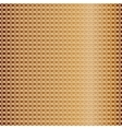 pattern of golden mesh vector image vector image