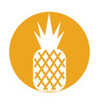 pineapple tropical and exotic fruit vector image vector image