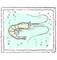 shrimp in frame vector image vector image