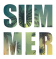 summer word from beautifil palm tree leaf vector image vector image