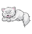 A sleeping cat vector image vector image
