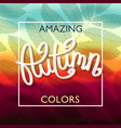 amazing autumn colors vector image vector image