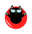 black cat floating on red air pool water circle vector image vector image