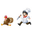 cartoon chef chasing a turk vector image vector image