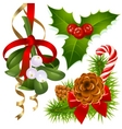 Christmas tree mistletoe and vector image vector image