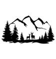 deer in wilderness vector image vector image