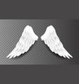 pair beautiful white angel wings isolated vector image