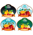 product labels with fruit vector image