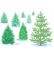 a set of pine trees fir trees with varying vector image vector image