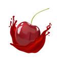cherry berry inside splashing juice on white vector image vector image