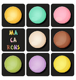 collection of macaron vector image vector image