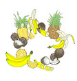 composition from tropical fruits vector image vector image