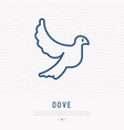 dove thin line icon vector image