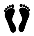 footprint - icon vector image vector image
