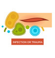 infection or trauma skin injury scratch and vector image