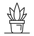 office aloe vera pot icon outline style vector image vector image
