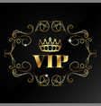vip with crown and pattern vector image