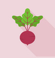 beetroot icon in flat design with long shadow vector image vector image