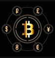 bitcoin icon in center a circle other vector image