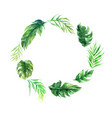 blank circle green leave plant wedding decoration vector image vector image