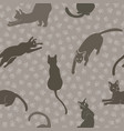 cute cats silhouettes pattern brown grey vector image