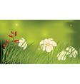 Flower glade vector image