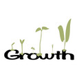 growth vector image vector image