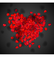 Heart of rose petals vector image