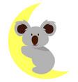 koala on moon on white background vector image vector image