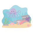 octopus crab starfish life coral reef cartoon vector image vector image
