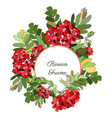 round frame decorated with red rowan berries vector image vector image