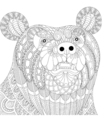 zentangle bear head for adult anti stress coloring vector image vector image