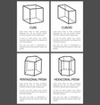 cube and cuboid pentagonal and hexagonal prisms vector image vector image