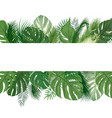 floral pattern tropical palm tree leaves vector image vector image