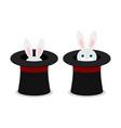 rabbit in hat flat vector image
