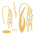 Rice vector image