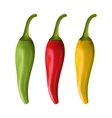 Set of Colorful Chili Peppers Isolated on White vector image