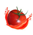tomato with juice splash isolated on a background vector image