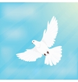 White Dove Soars in Space Design Flat vector image vector image