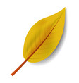 yellow leaf icon realistic style vector image vector image